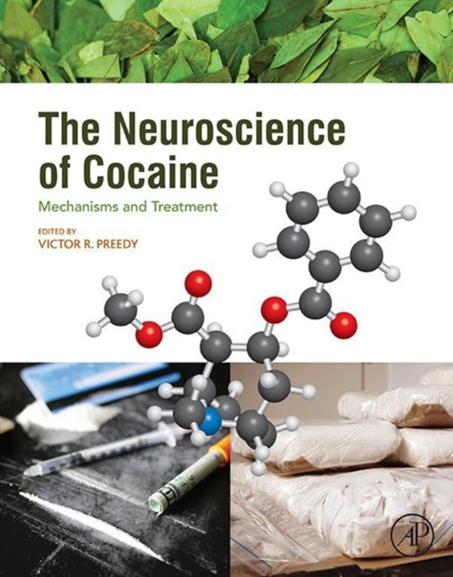 The Neuroscience of Cocaine