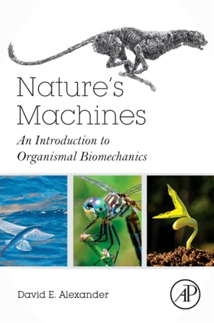 Nature's Machines