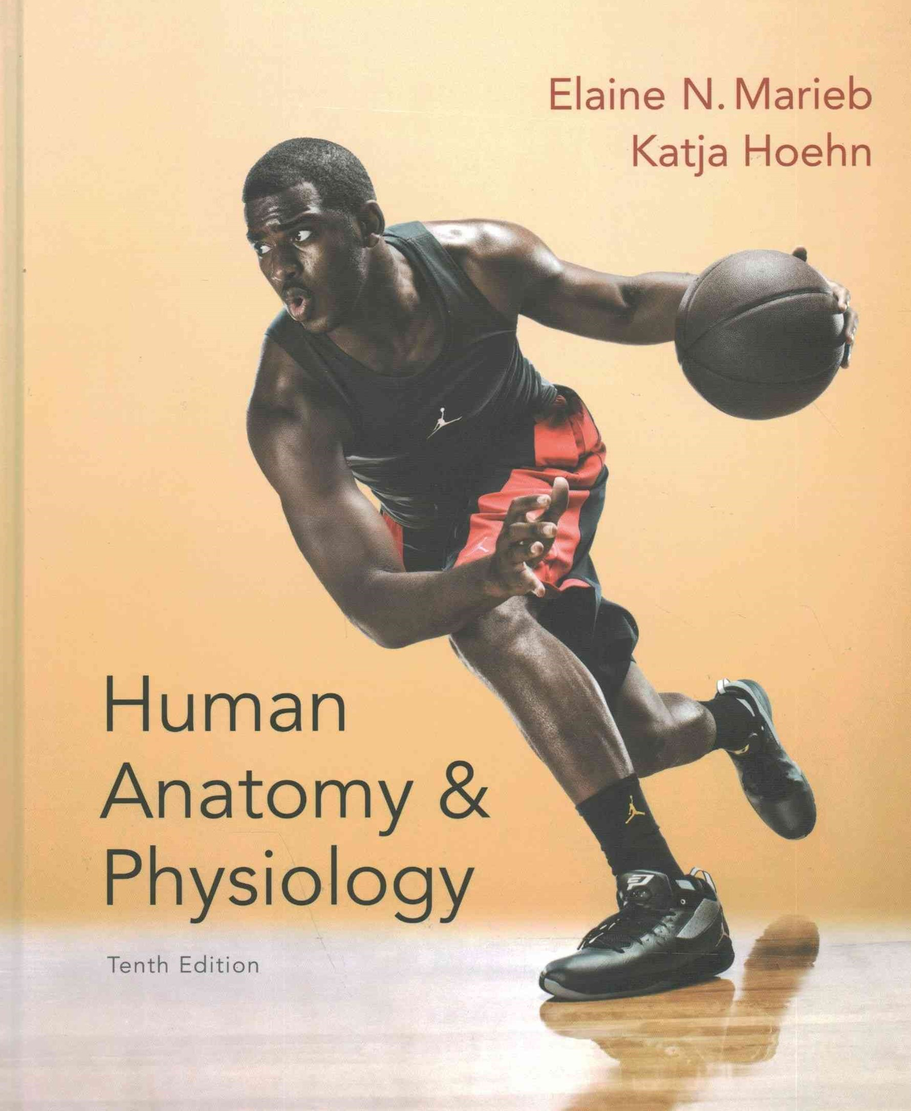 Human Anatomy and Physiology; Modified MasteringA&P with Pearson EText -- ValuePack Access Card; Ge