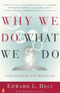 Why We Do What We Do by UNKNOWN, Richard Flaste, Edward L. Deci (9780140255263) - PaperBack - Religion & Spirituality Spirituality