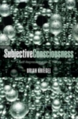 Subjective Consciousness: A Self-Representational Theory