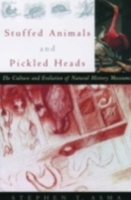 (ebook) Stuffed Animals and Pickled Heads