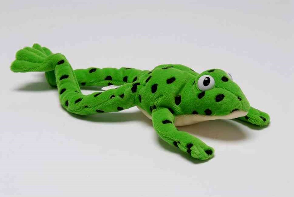 Read Write Inc Fred the Frog Toy