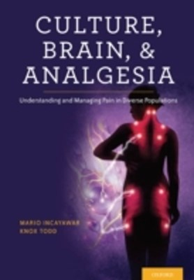 Culture, Brain, and Analgesia: Understanding and Managing Pain in Diverse Populations