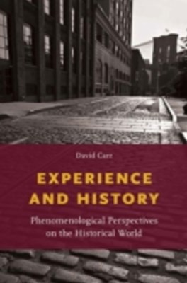 (ebook) Experience and History