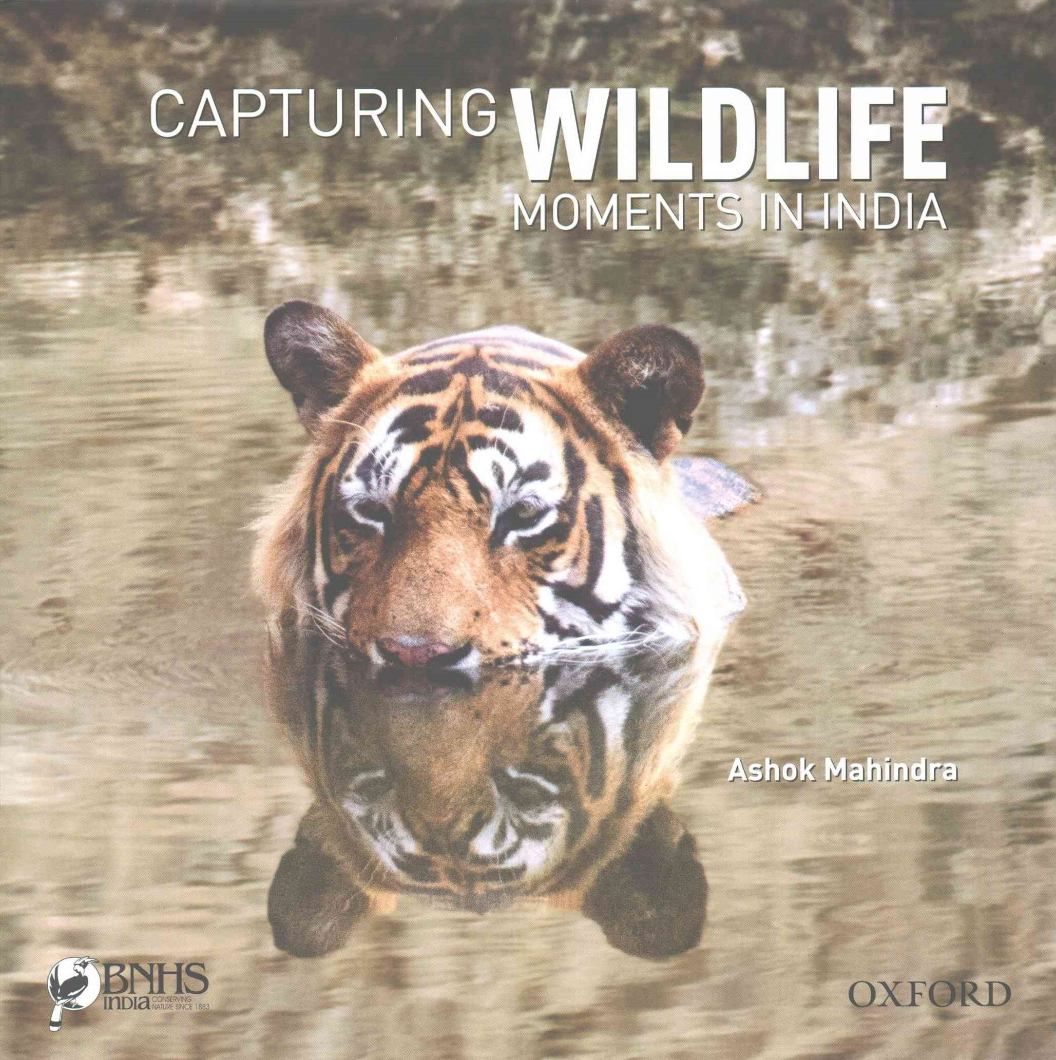 Capturing Wildlife Moments in India