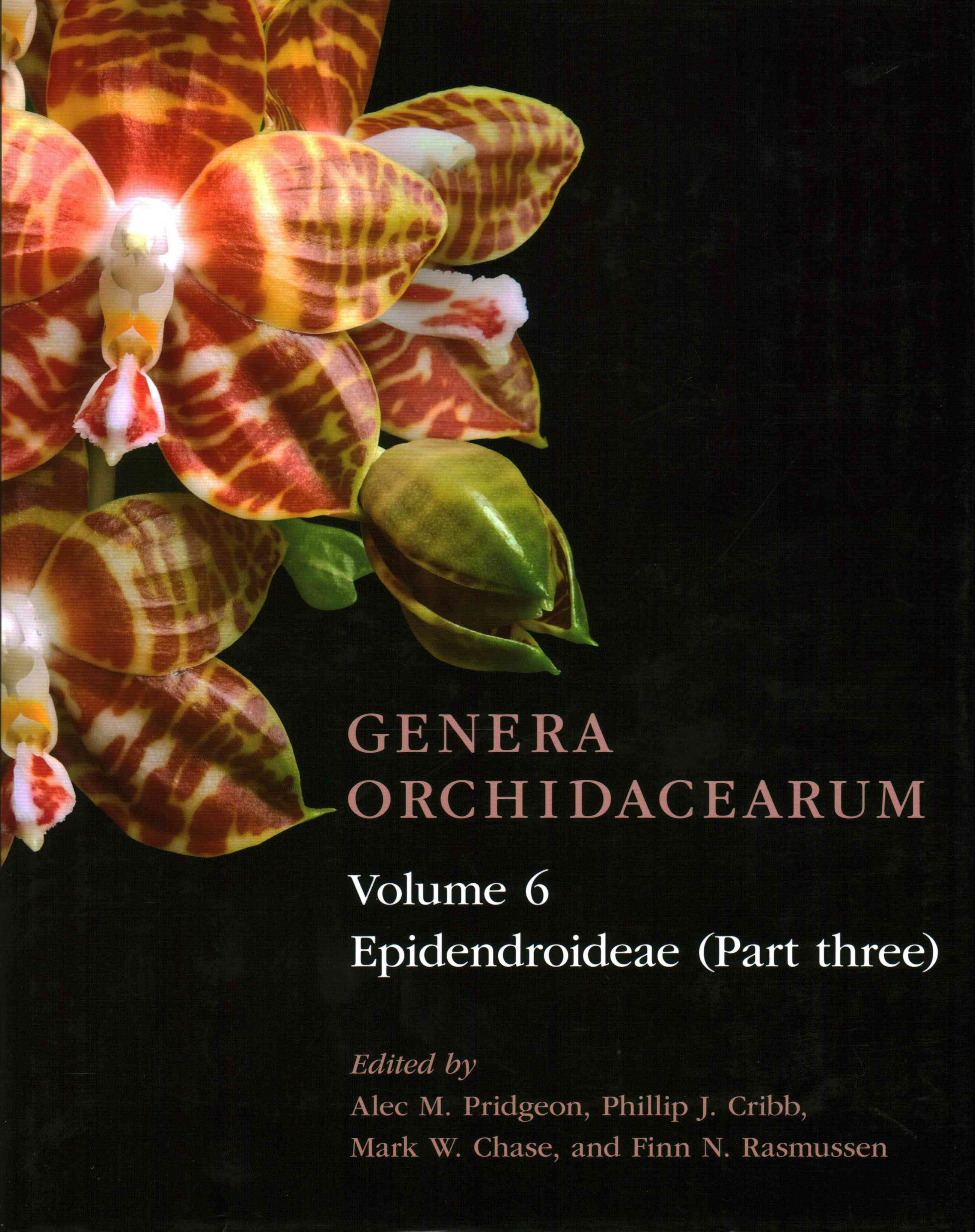 Genera Orchidacearum Volume 6