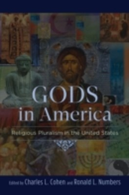 Gods in America: Religious Pluralism in the United States