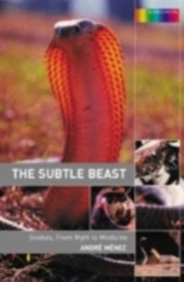 (ebook) Subtle Beast