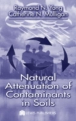 (ebook) Natural Attenuation of Contaminants in Soils