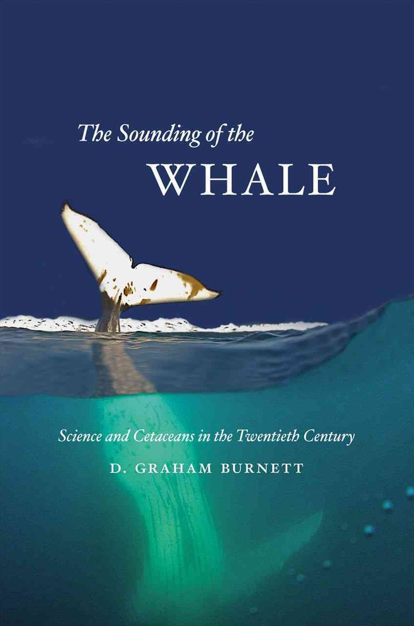 Sounding of the Whale