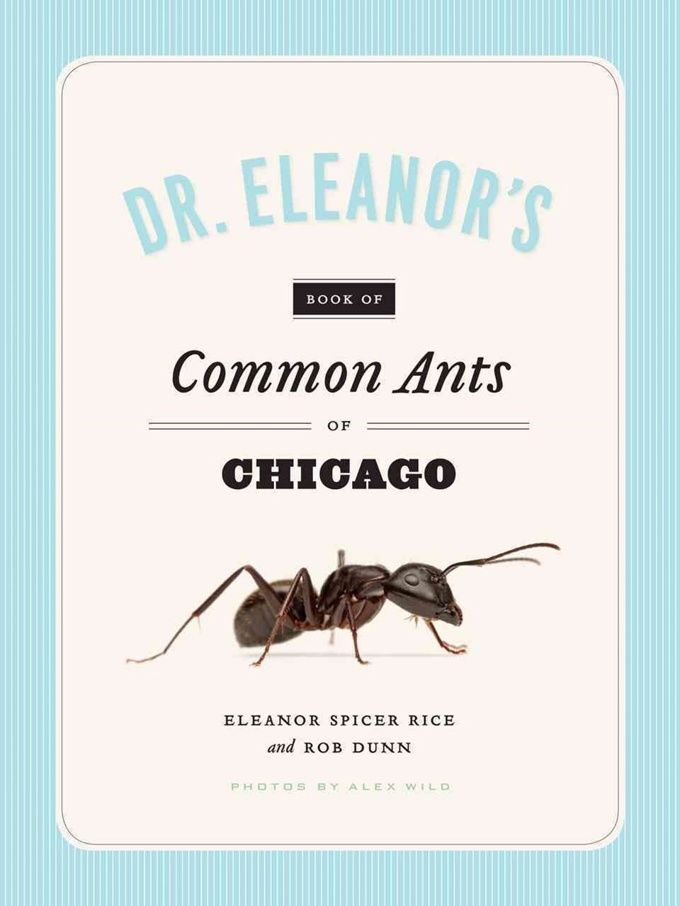 Dr. Eleanor's Book of Common Ants of Chicago