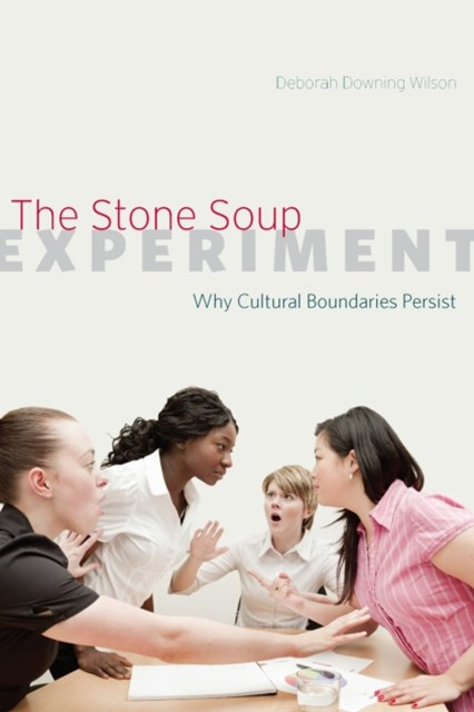 (ebook) Stone Soup Experiment