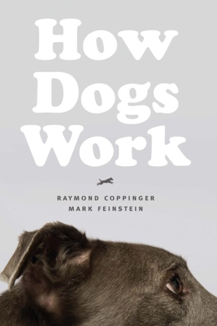 (ebook) How Dogs Work