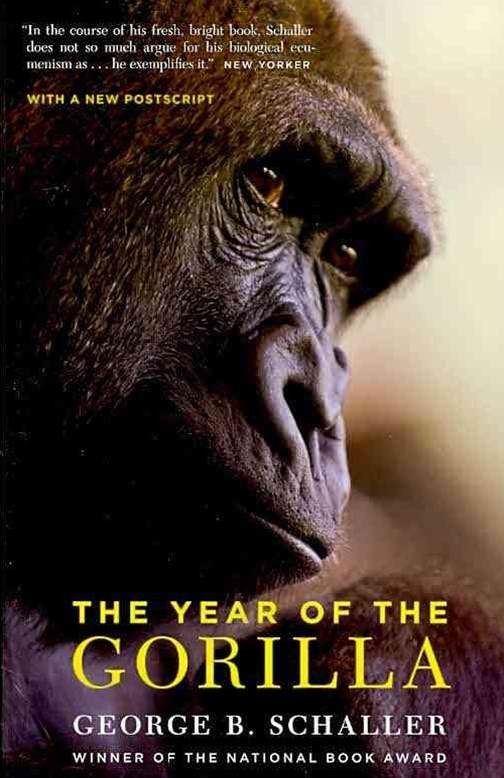 Year of the Gorilla
