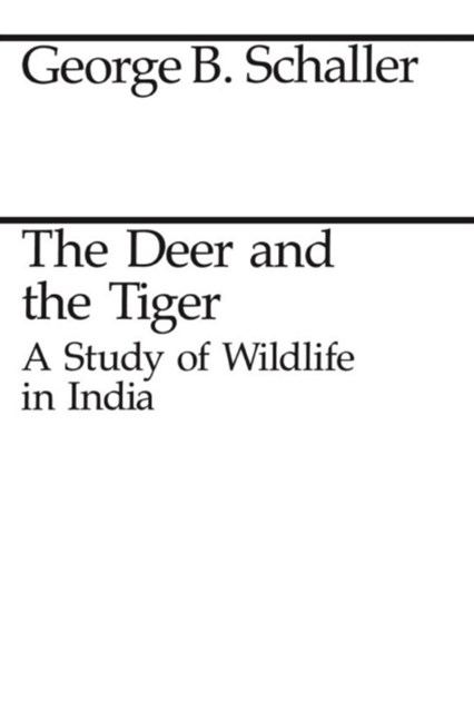 Deer and the Tiger