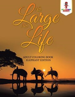As Large as Life by Coloring Bandit (9780228204381) - PaperBack - Art & Architecture Art Technique