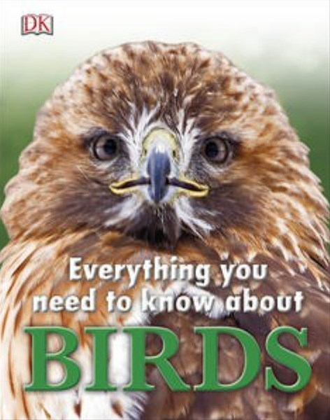 Everything You Need To Know About: Birds