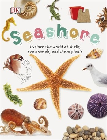 Seashore: Nature Explorers