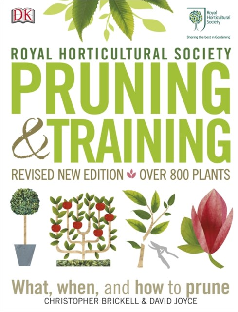 RHS Pruning & Training