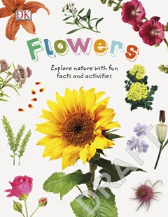 Nature Explorers Flowers: Explore Nature with Fun Facts and Activities by DK (9780241358344) - HardCover - Non-Fiction