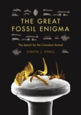 (ebook) Great Fossil Enigma