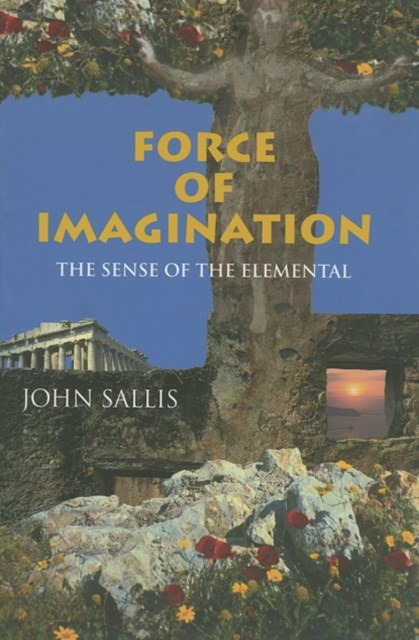 Force of Imagination