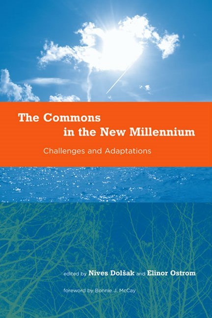 Commons in the New Millennium