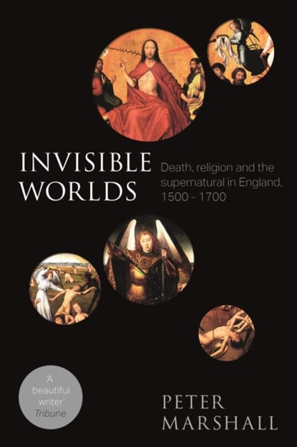 (ebook) Invisible Worlds