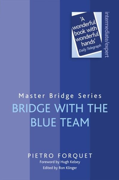 Bridge With The Blue Team