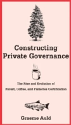 (ebook) Constructing Private Governance
