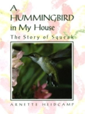 Hummingbird in My House