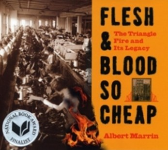 (ebook) Flesh and Blood So Cheap: The Triangle Fire and Its Legacy - Education