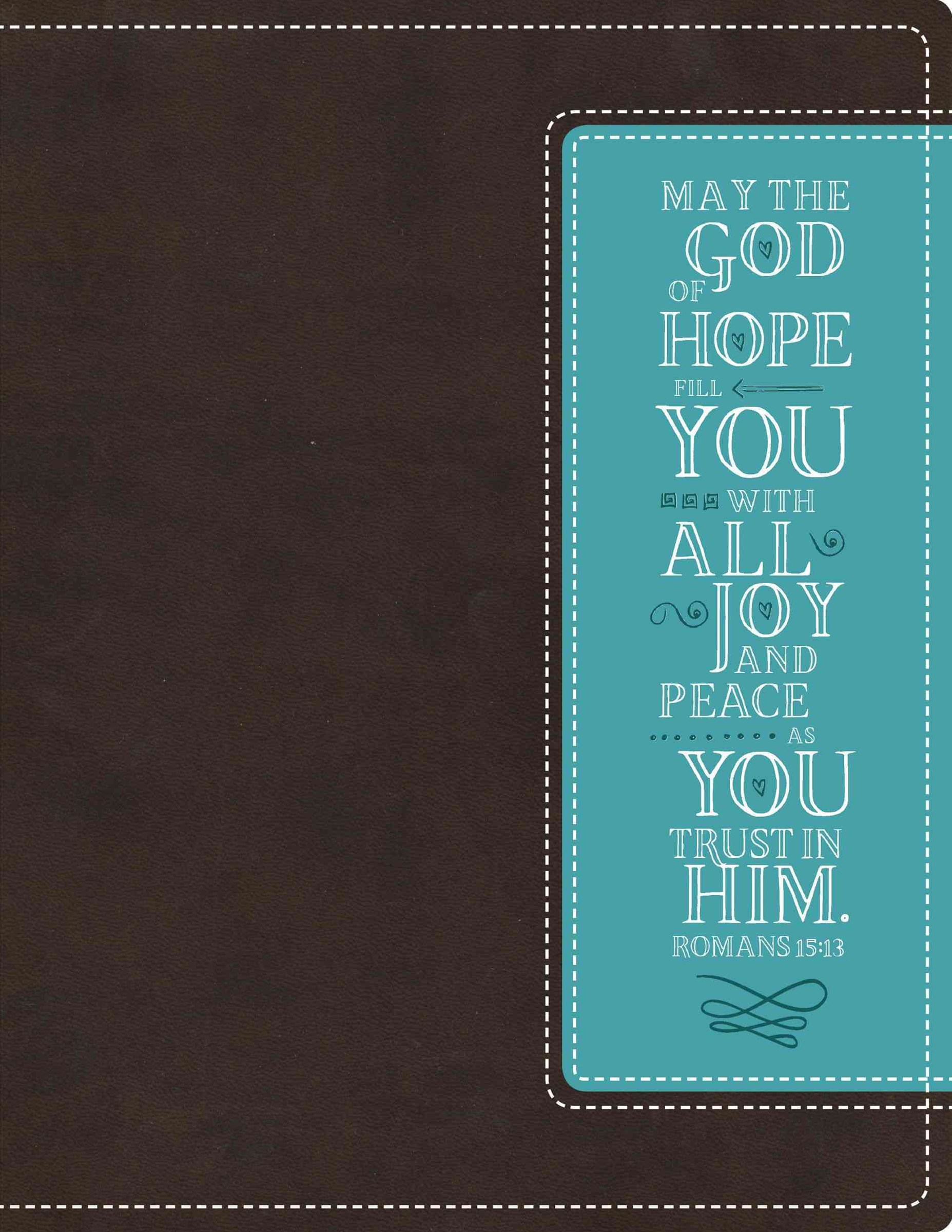 NIV Beautiful Word Bible [Italian Duo-Tone Chocolate/Turquoise]