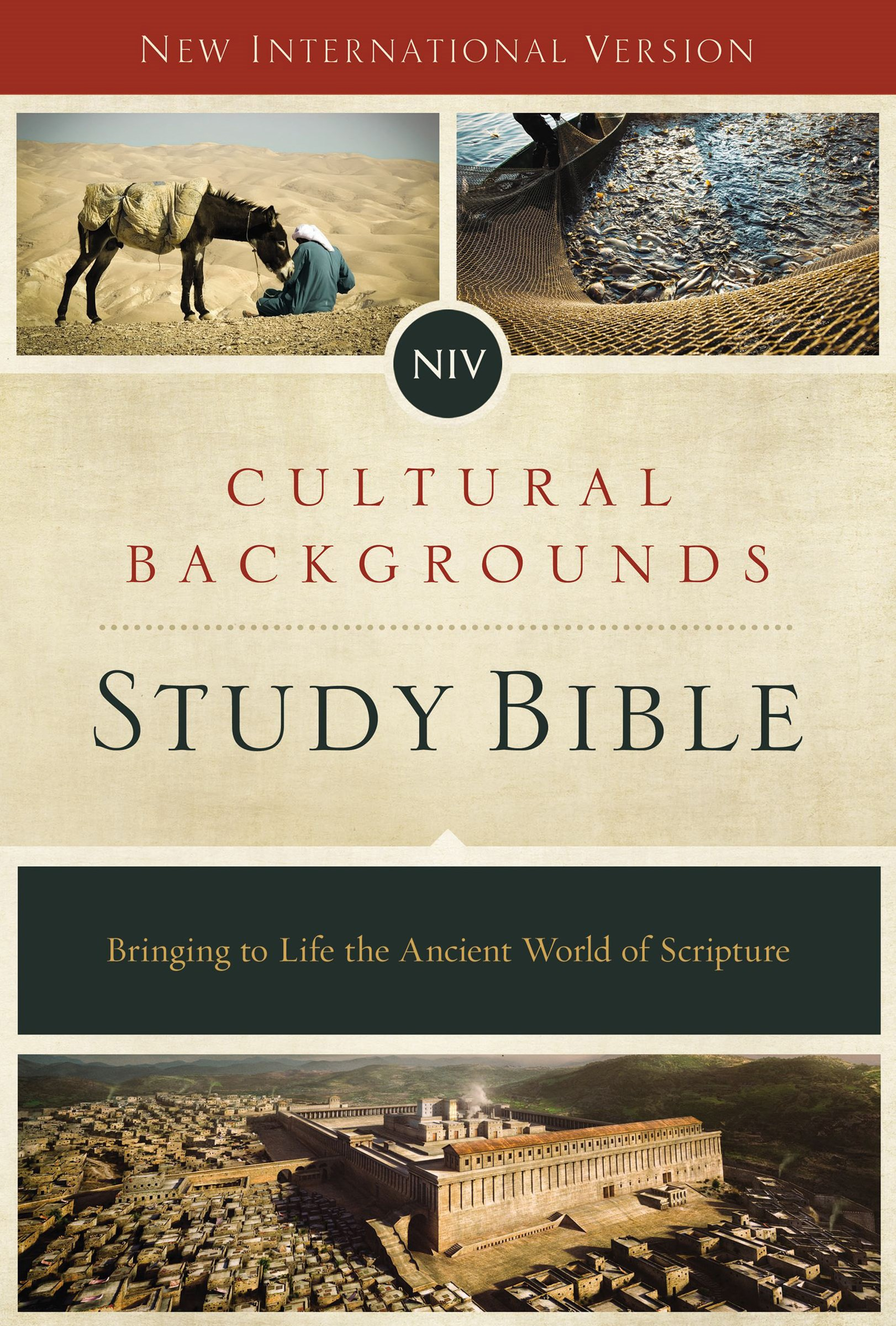 NIV, Cultural Backgrounds Study Bible: Bringing To Life The Ancient World Of Scripture