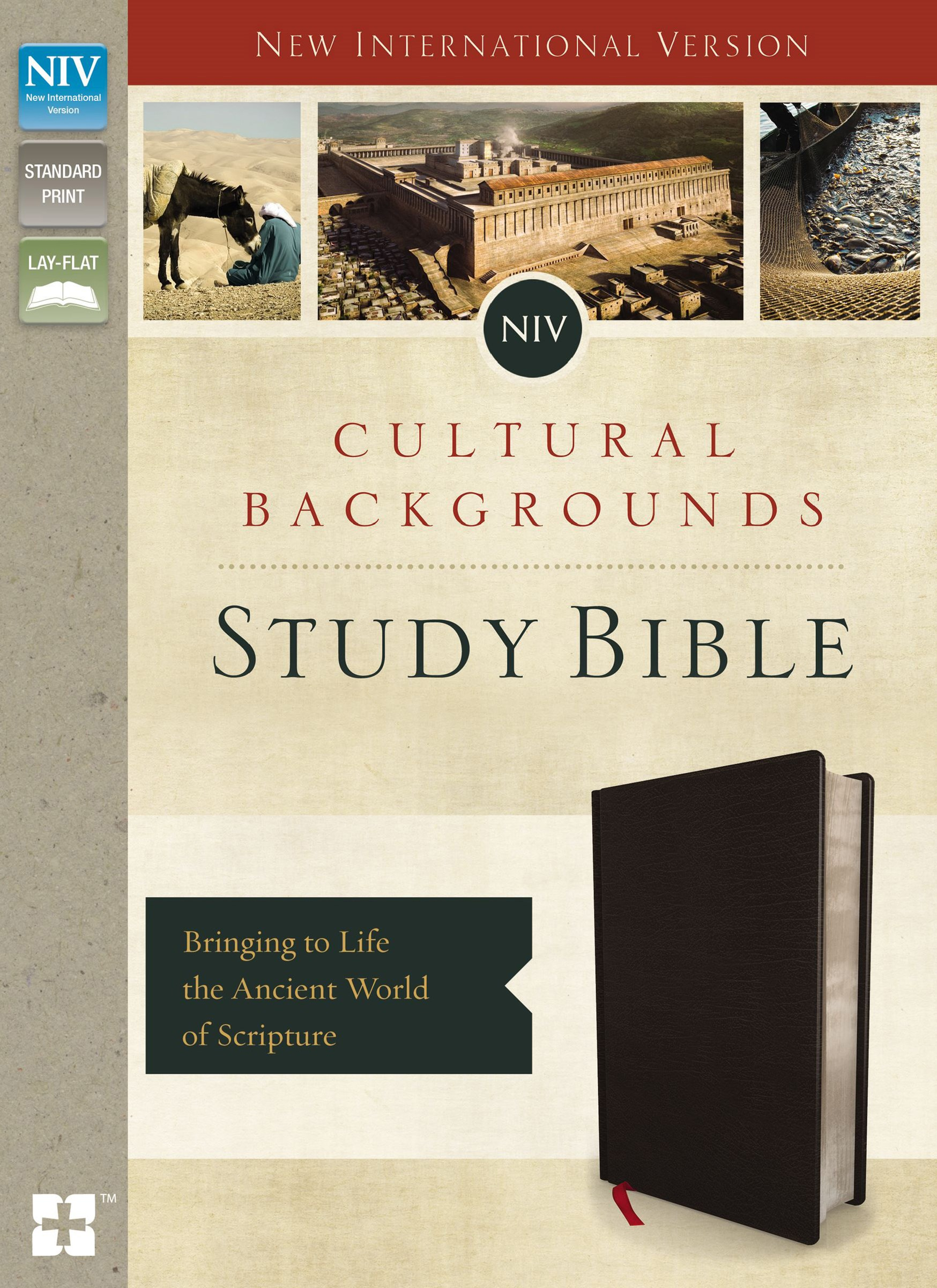NIV, Cultural Backgrounds Study Bible, Indexed: Bringing To Life The Ancient World Of Scripture [Black]
