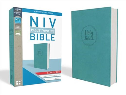NIV Value Thinline Bible [Large Print, Blue]