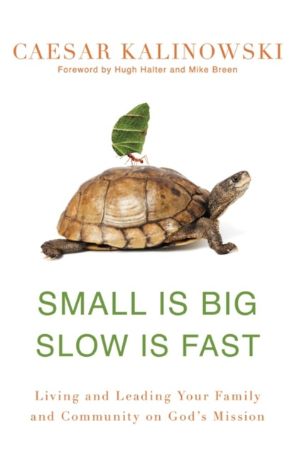 (ebook) Small Is Big, Slow Is Fast
