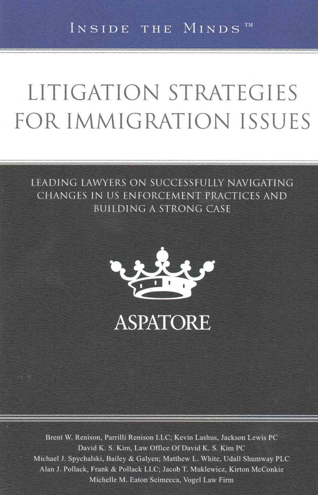 Litigation Strategies for Immigration Issues