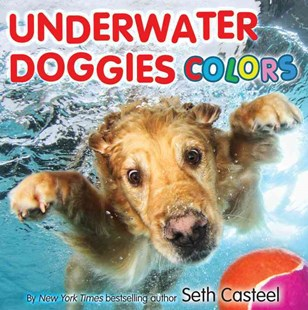 Underwater Doggies Colors by Seth Casteel (9780316373654) - HardCover - Non-Fiction Animals