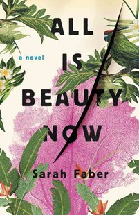 All Is Beauty Now by Sarah Faber (9780316394963) - HardCover - Modern & Contemporary Fiction General Fiction