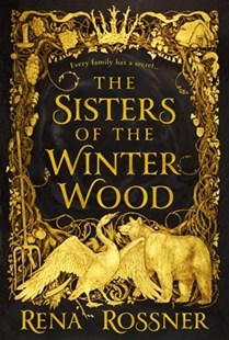 The Sisters of the Winter Wood by Rena Rossner (9780316483254) - HardCover - Fantasy