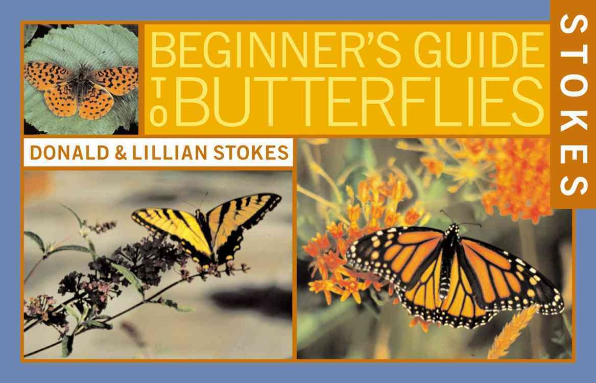 Stokes Beginner's Guide to Butterflies