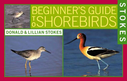 Stokes Beginner's Guide to Shorebirds by Donald Stokes, Donald Stokes, Lillian Stokes, Mary Tondorf-Dick (9780316816960) - PaperBack - Pets & Nature Birds