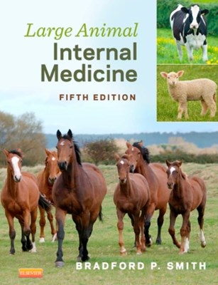 (ebook) Large Animal Internal Medicine - E-Book