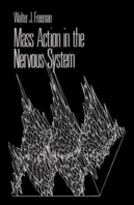 Mass Action in the Nervous System