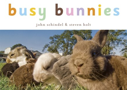 (ebook) Busy Bunnies - Children's Fiction Early Readers (0-4)