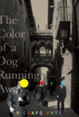 Color of A Dog Running Away