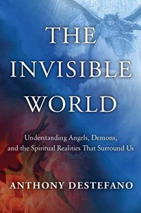 The Invisible World by Anthony DeStefano (9780385522236) - HardCover - Religion & Spirituality Christianity