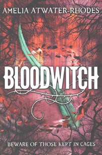 Bloodwitch (Book 1) by Amelia Atwater-Rhodes (9780385743044) - PaperBack - Children's Fiction Teenage (11-13)